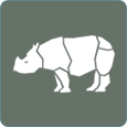 icon java rhino